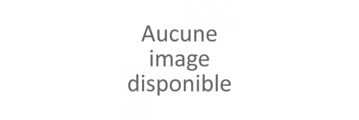 Pinceau A Chiqueter, Balais Blaireau